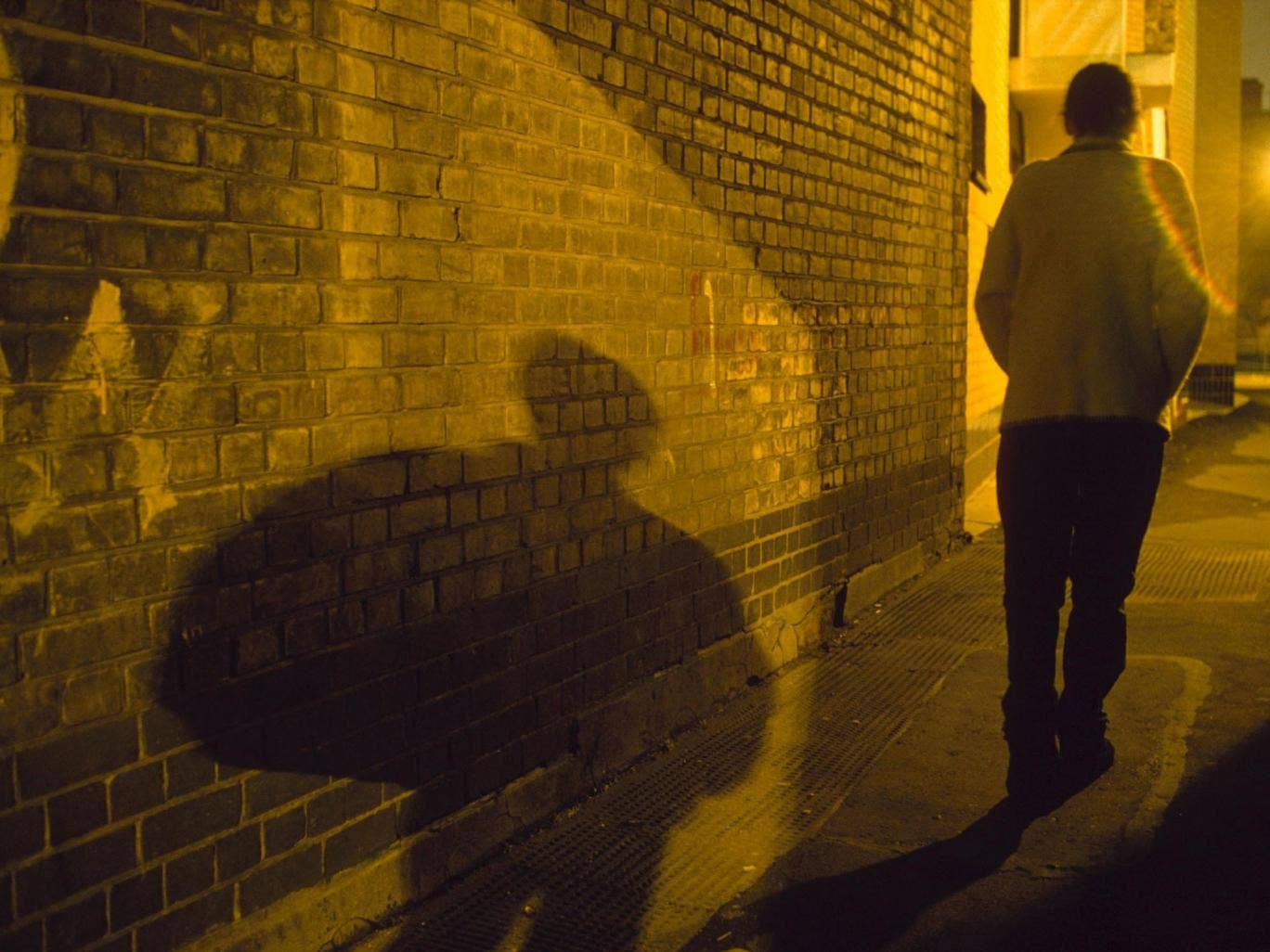 Barely 30 per cent of police officers have seen training packages on the new stalking law despite its implementation a year ago