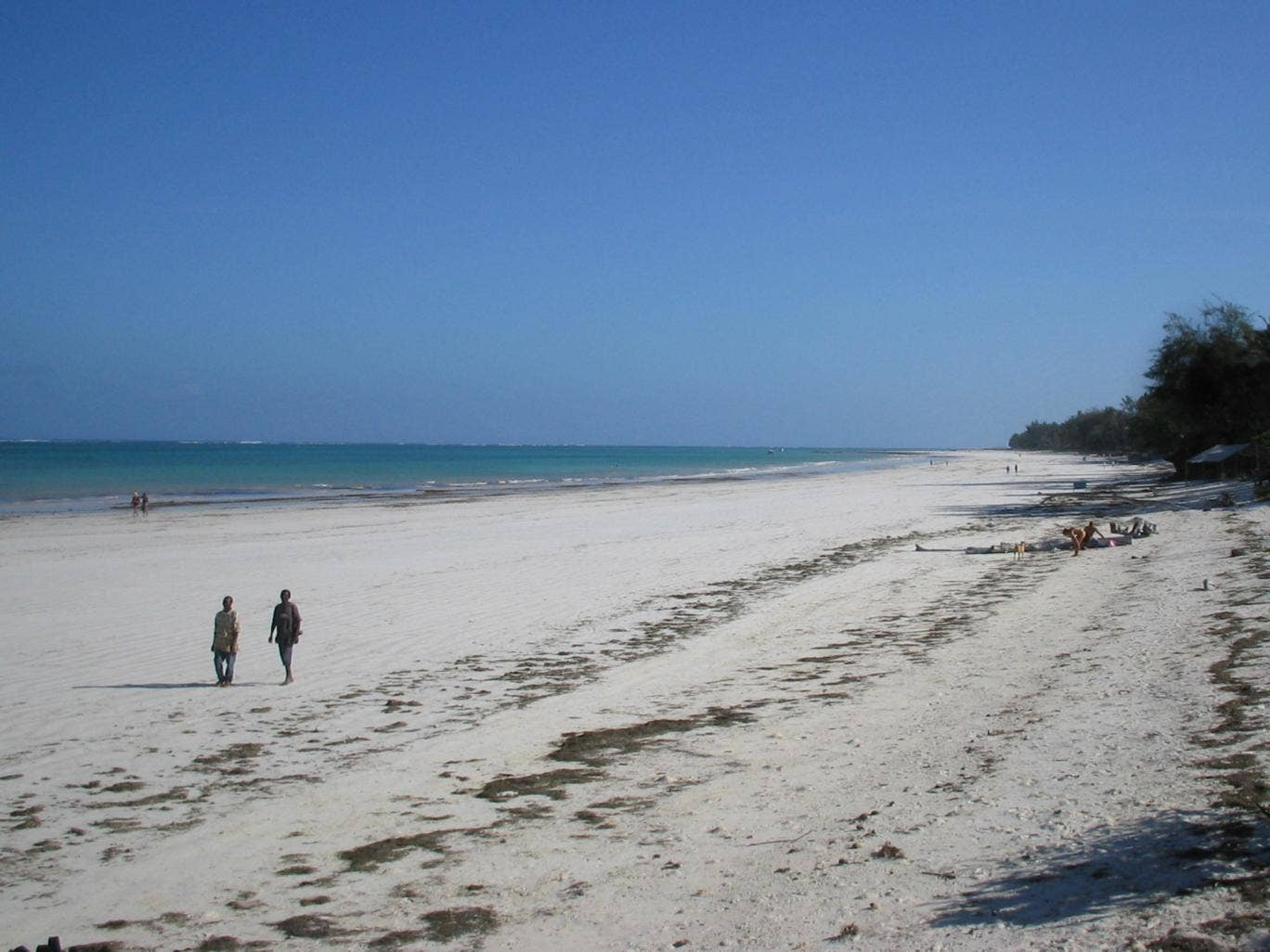 The pair are thought to have been detained in the beach resort of Diani, on the south coast of the country