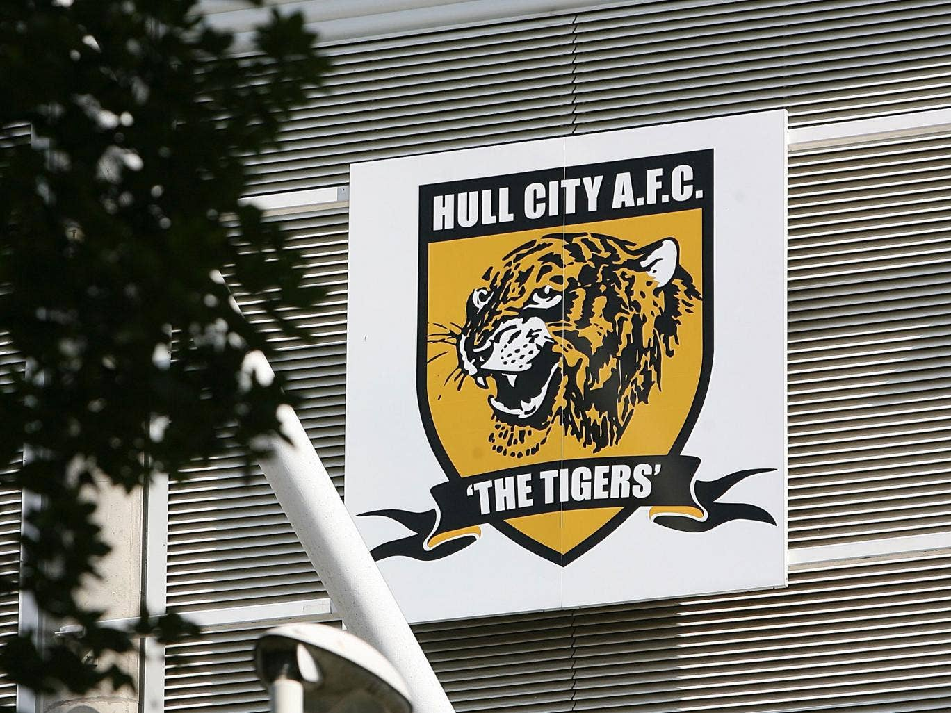Hull City's owner has described supporters protesting against his plan to change the name to Hull Tigers as 'hooligans' and warned he will put the club up for sale if the fans do not accept his authority