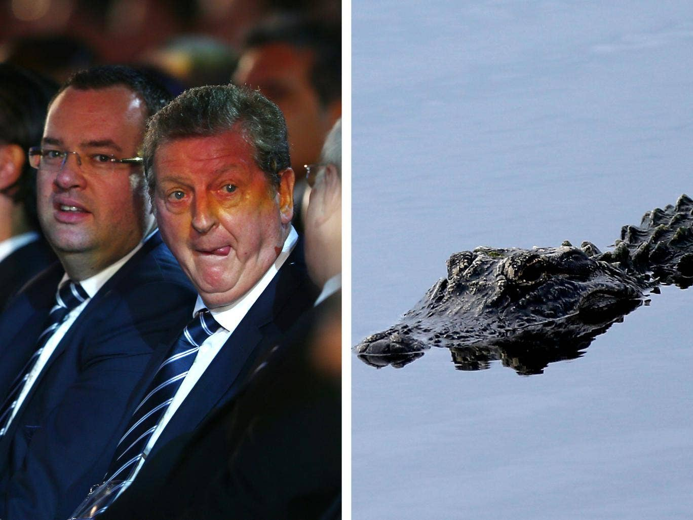 Roy Hodgson's England side will begin the 2014 World Cup in Manaus, where fans have been warned of meeting alligators during the night
