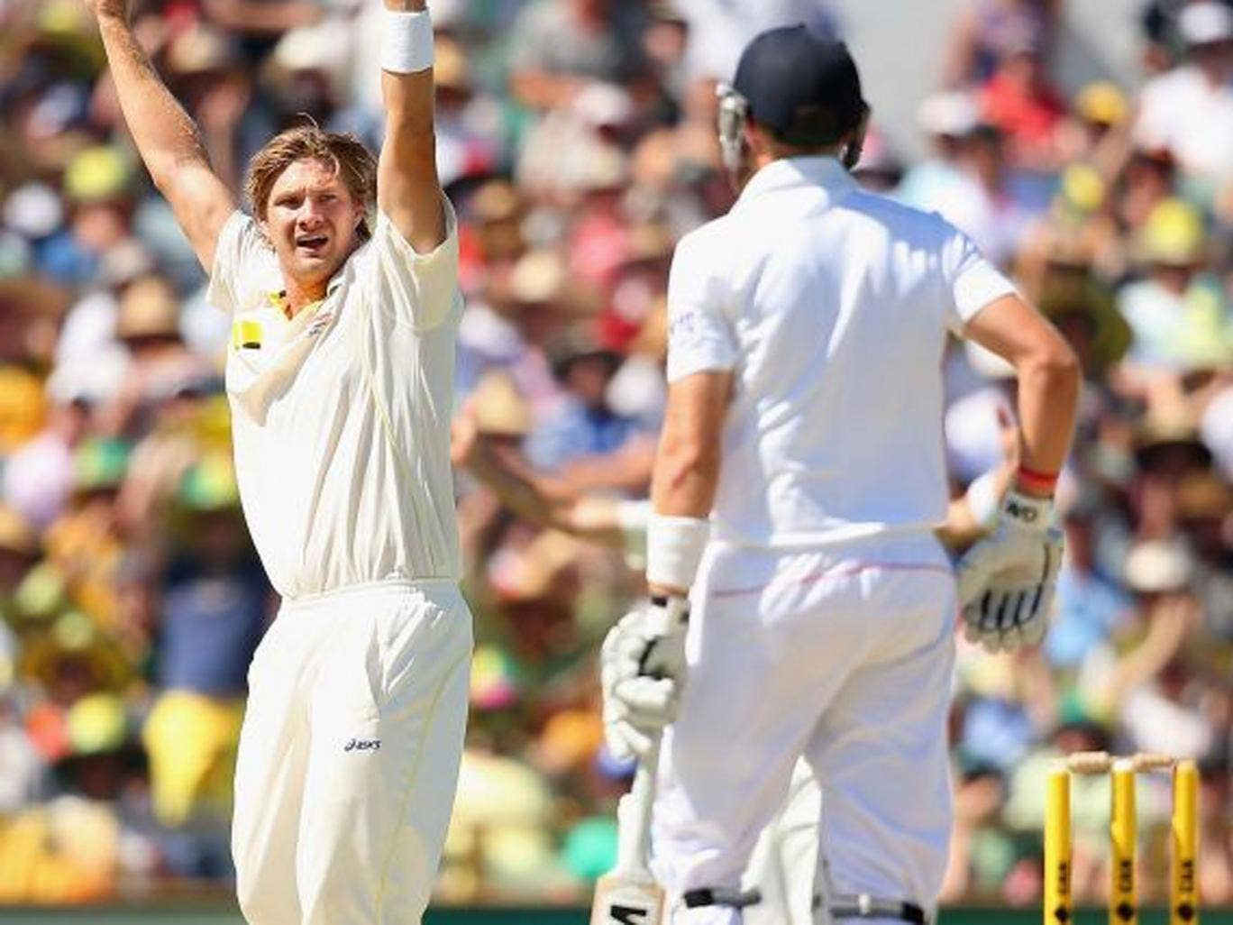 High hopes: Shane Watson appeals for the disputed catch off Joe Root