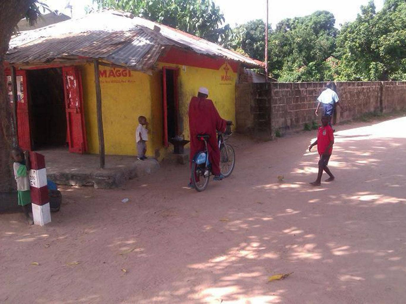 This picture tweeted by Oxfam's campaigns and policy director appears to show a Boris Bike turning up in Gambia