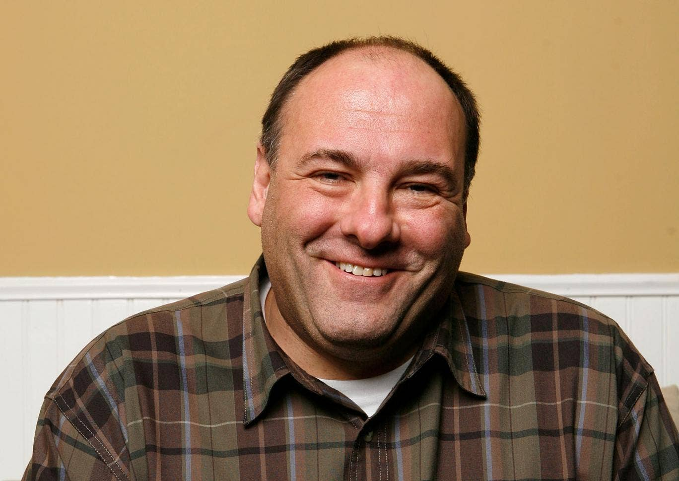 Sopranos actor James Gandolfini died in June