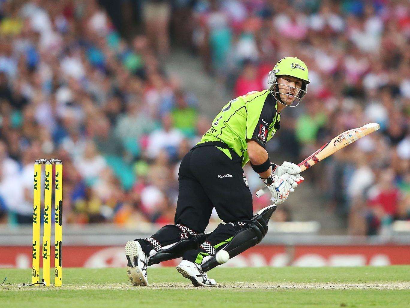 Australia batsman David Warner in action for the Sydney Sixers