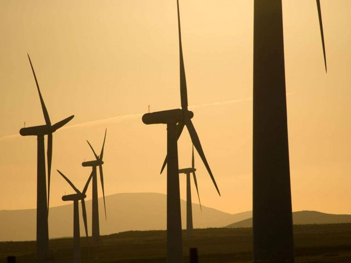 Green day: the answer for investors may be blowing in the wind as renewable energy projects look for fresh funds