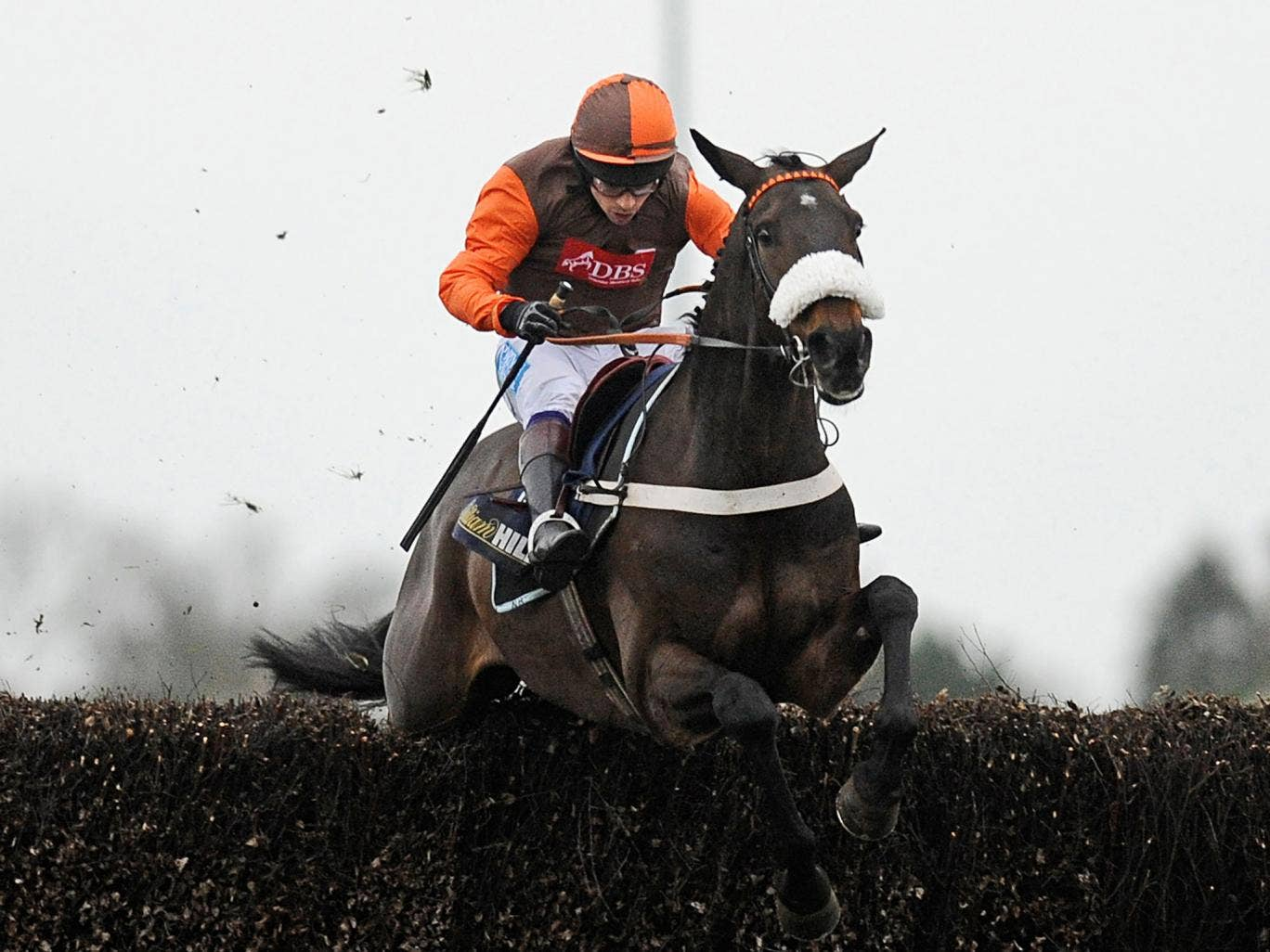 Long Run, partnered by Sam Waley-Cohen, wins the King George VI Chase at Kempton last Christmas
