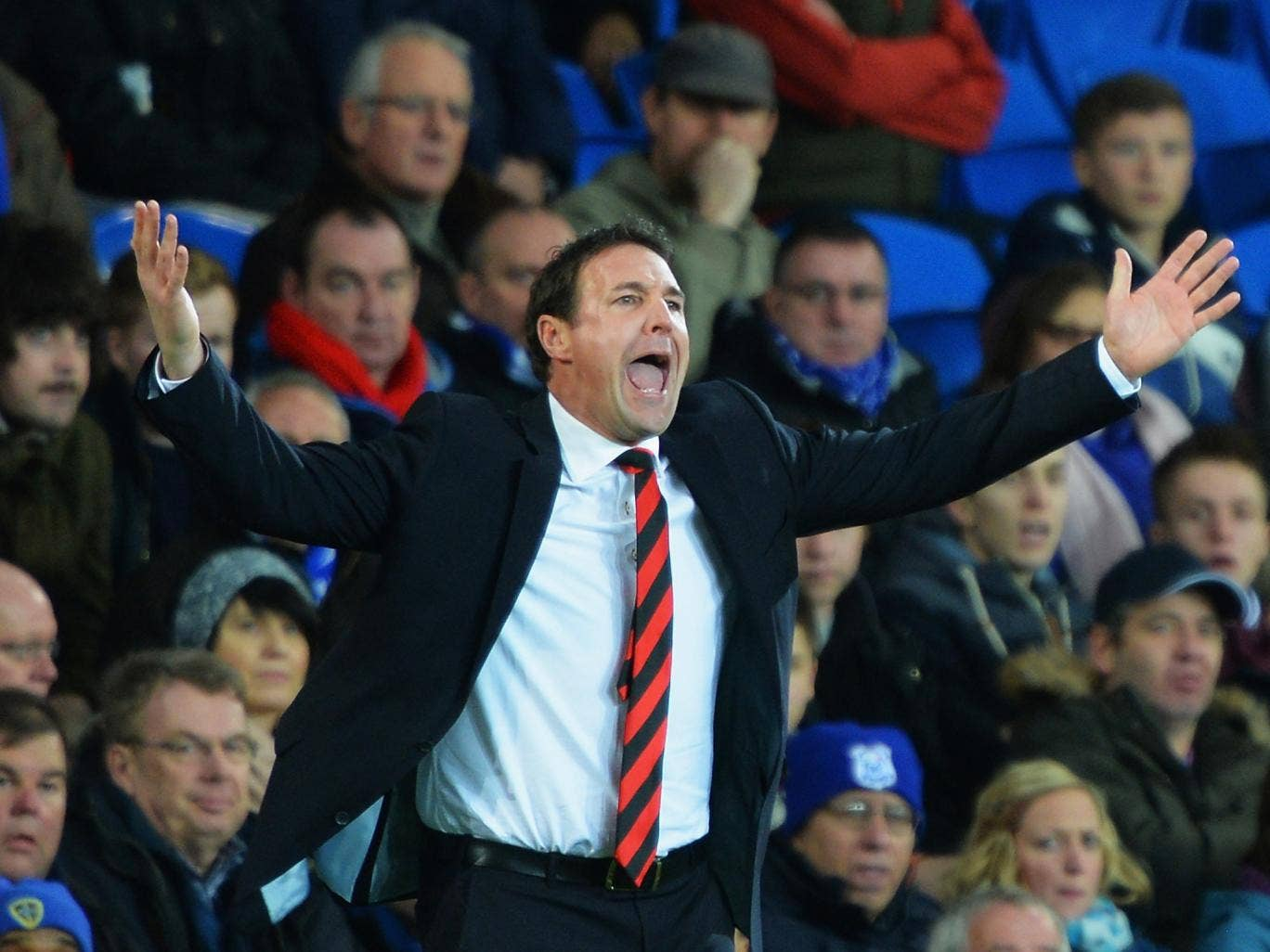 Malky Mackay remonstrates on the sidelines during Cardiff's 3-0 loss to Southampton