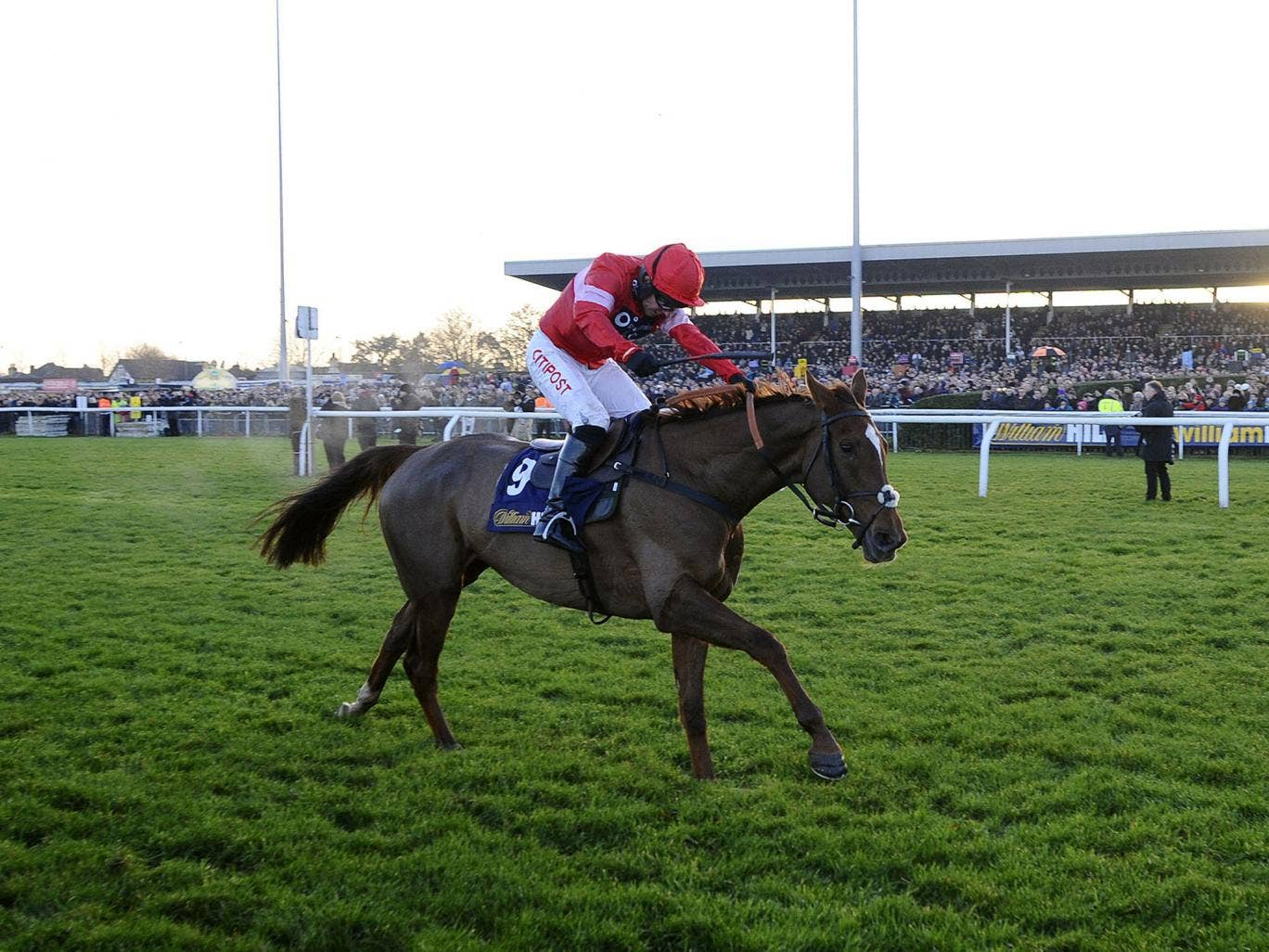 Silviniaco Conti, ridden by Noel Fehily, wins the King George VI Chase at Kempton