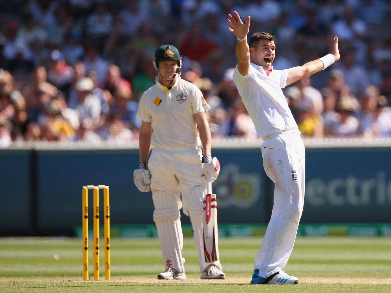 James Anderson appeals for the wicket of George Bailey, who went for a duck in the first innings of the Fourth Test