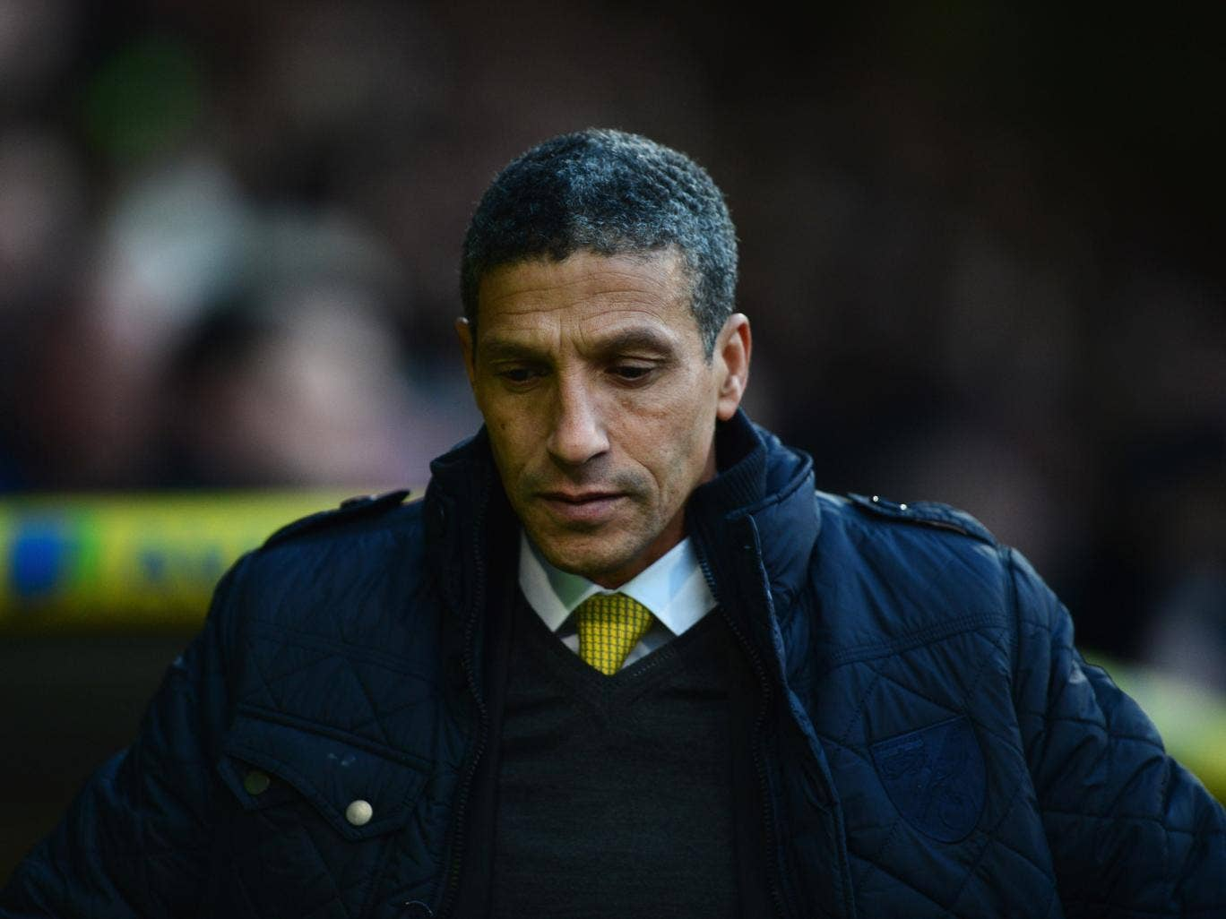 Norwich manager Chris Hughton has defended his decision to go for the win after plan backfired when Scott Parker scored a late winner for Fulham