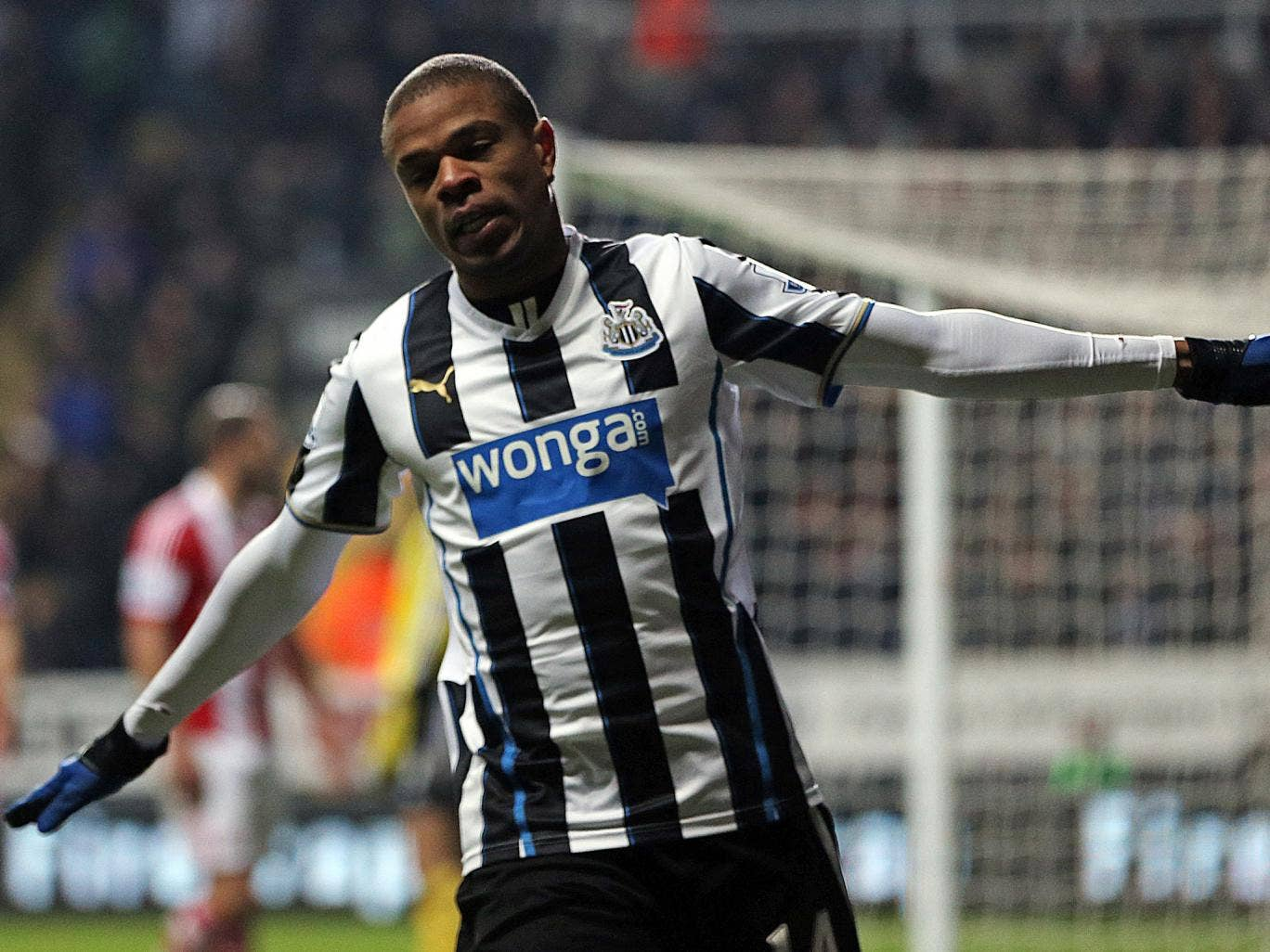 Loic Remy celebrates after scoring for Newcastle against Stoke