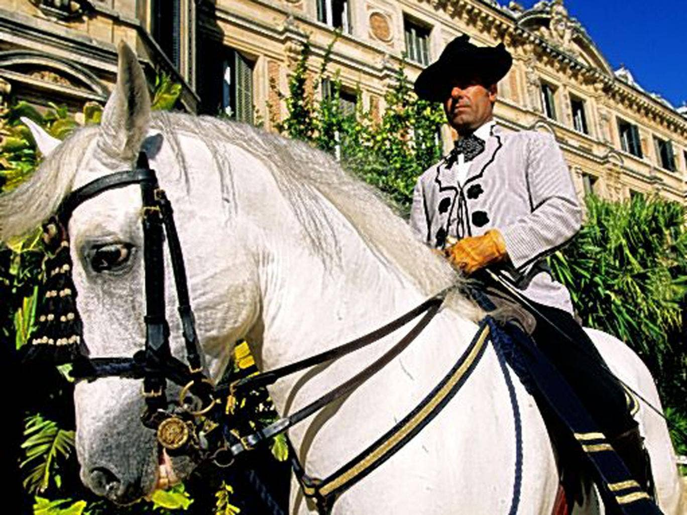 The Royal Andalusian School of Equestrian Art: bi-weekly shows by the dancing horses