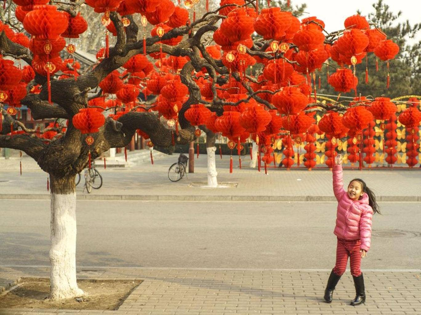 A girl explores red lanterns decorations prepared for Chinese Spring Festival or Lunar New Year in Beijing
