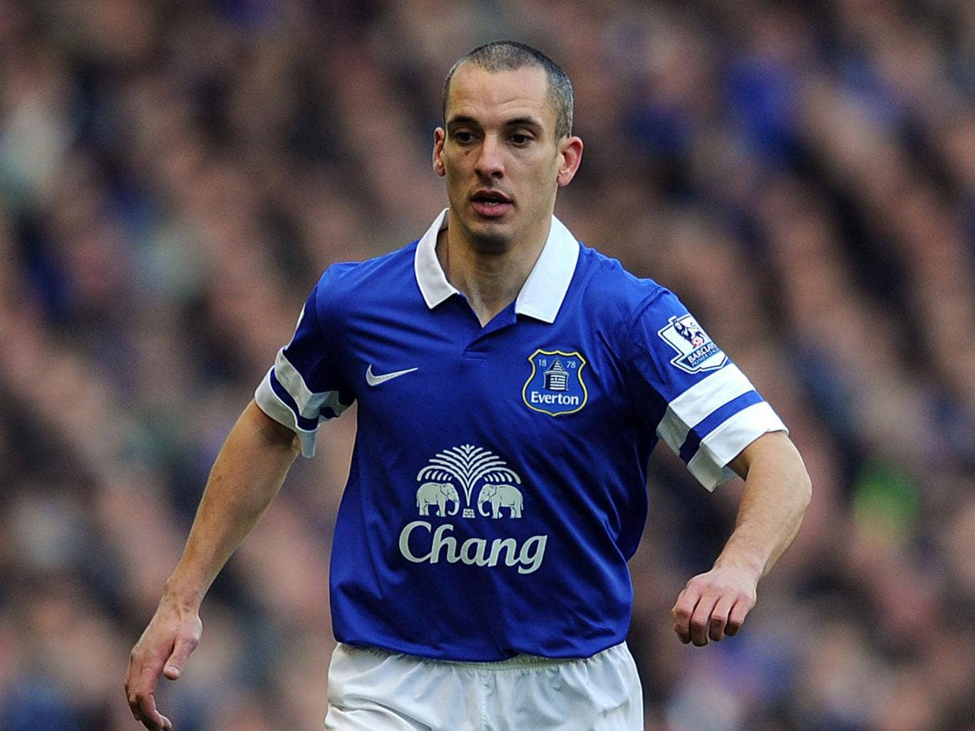 Leon Osman was a member of the Everton side that reached the FA Cup semi-finals in 2012, only to be knocked out by Liverpool having taken the lead