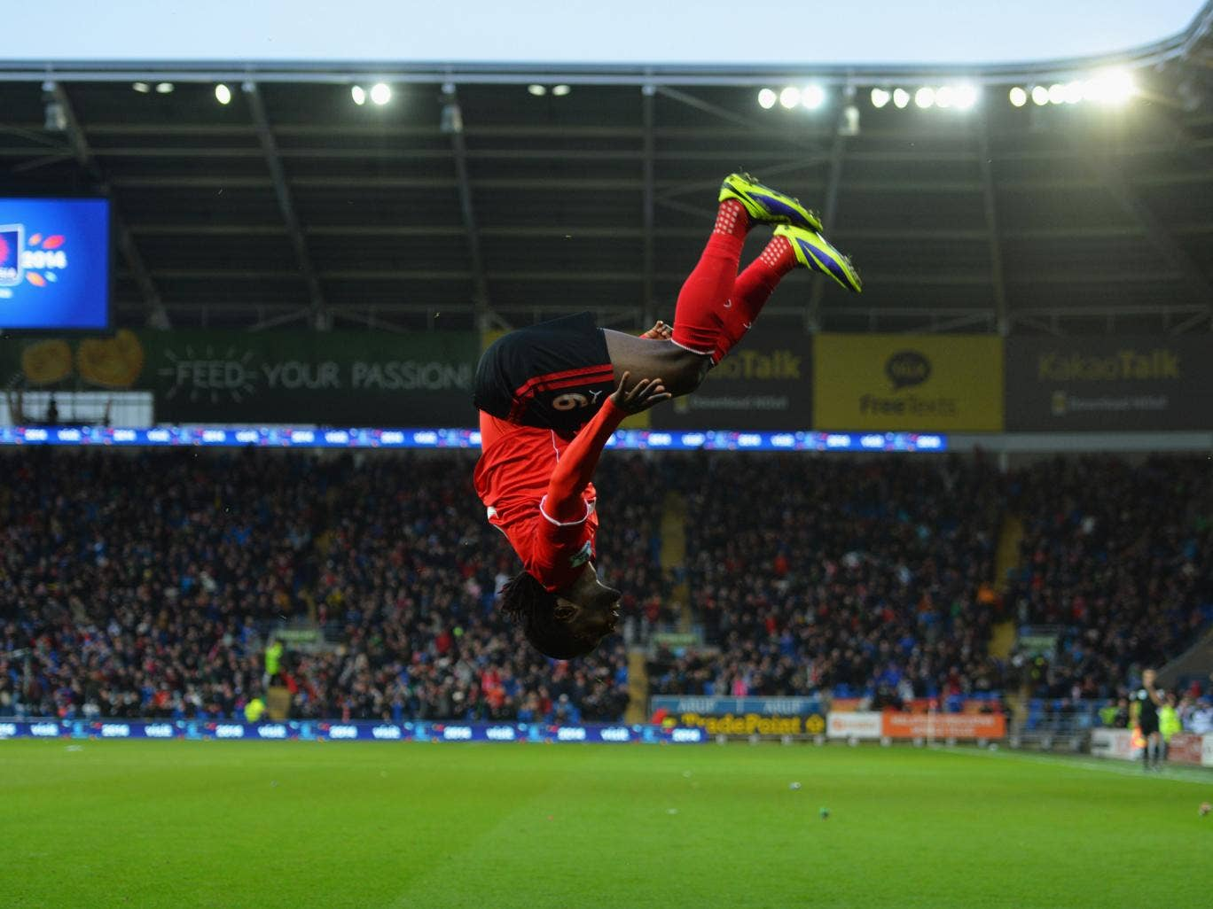 Kenwyne Jones celebrates after scoring the winner for Cardiff on his debut against Nowrich