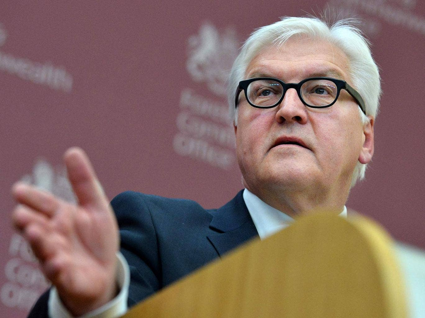 Germany's Foreign Minister Frank-Walter Steinmeier speaks during a news conference with Britain's Foreign Secretary William Hague in the Foreign and Commonwealth Office February 3, 2014