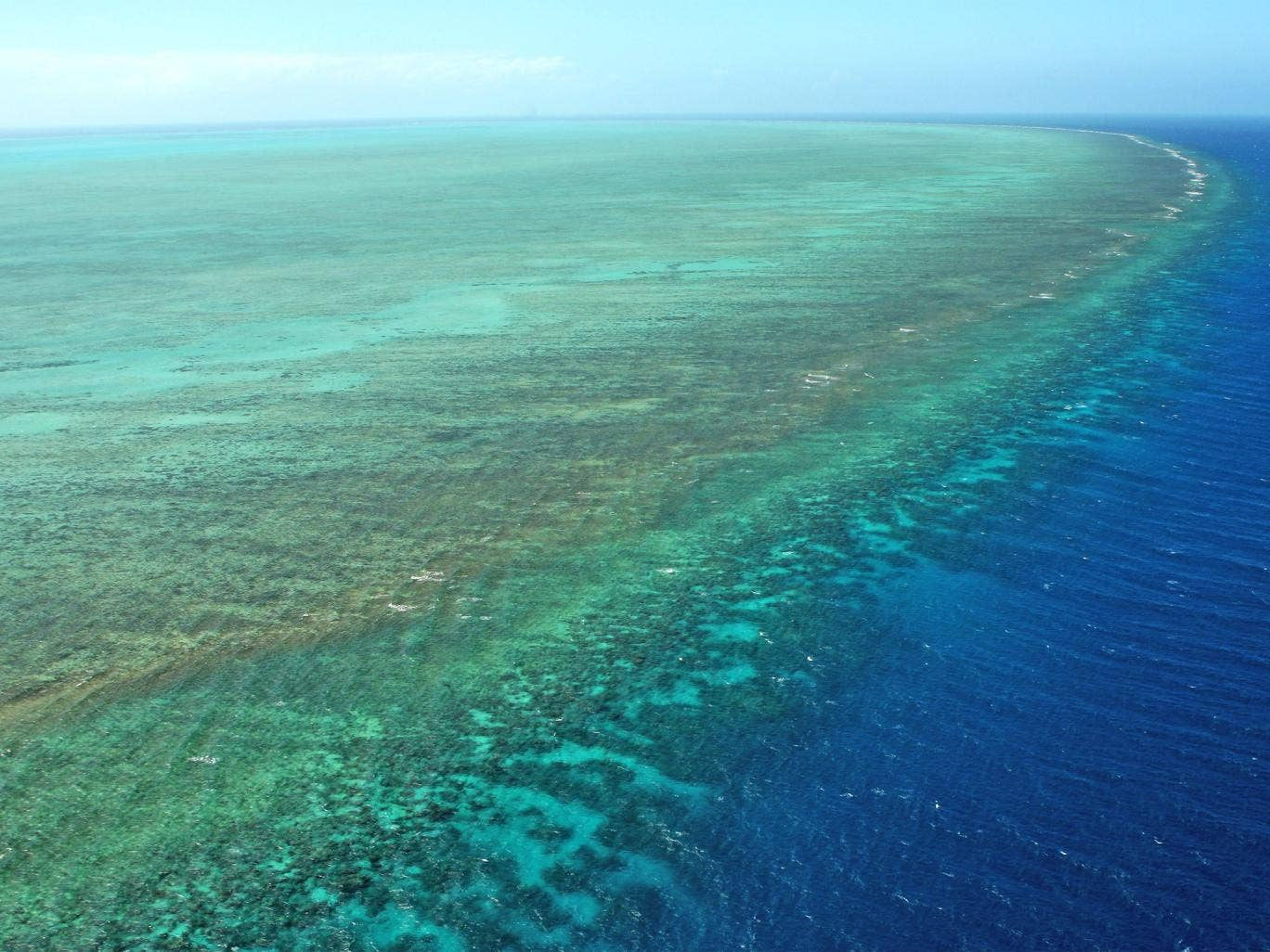 The Great Barrier Reef faces multiple threats