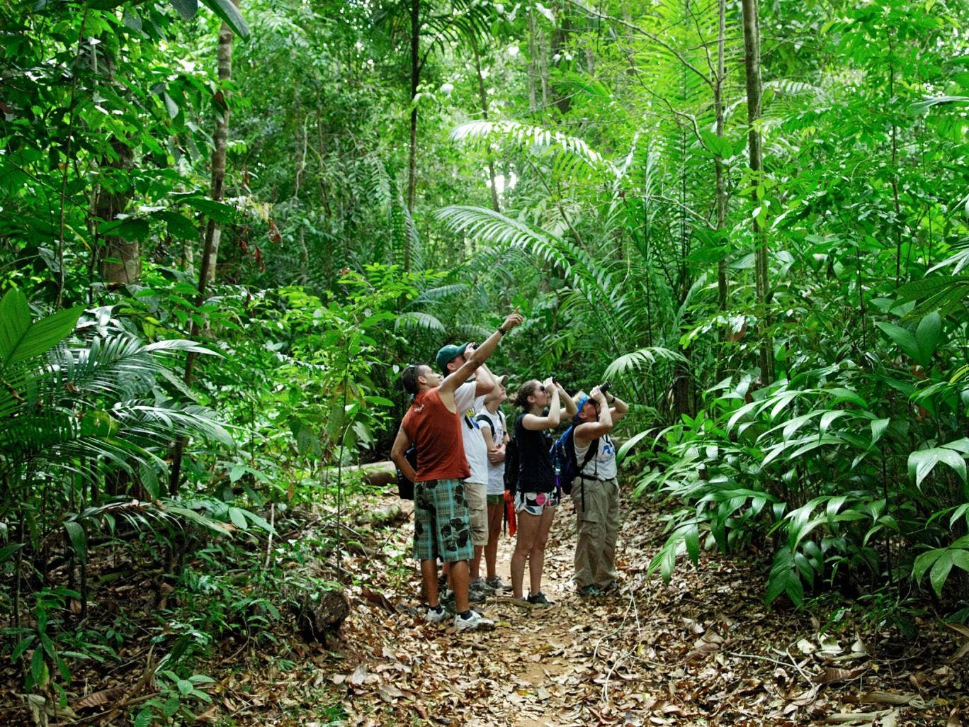 Where the wild things are: exploring Costa Rica