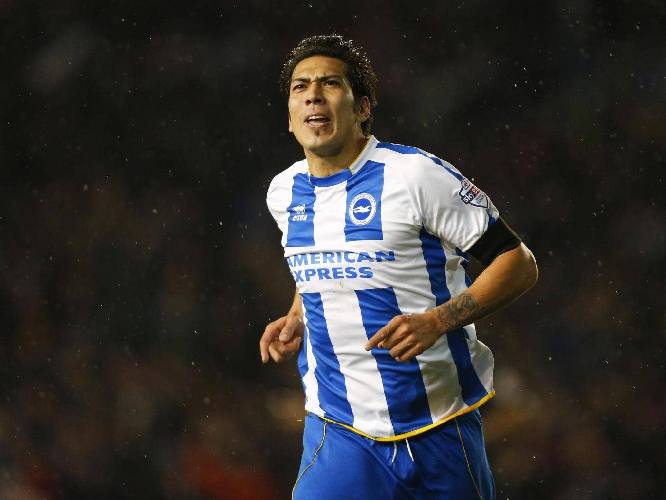 Leonardo Ulloa scored in his third successive game for Brighton last night