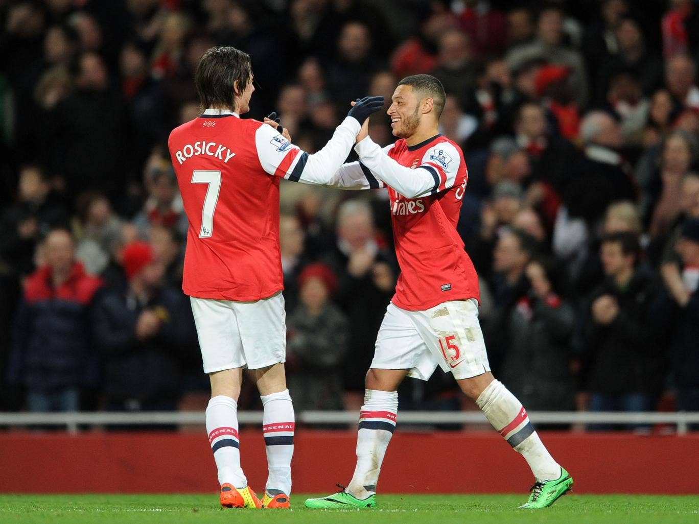 Arsenal manager Arsene Wenger looks set to decide between Tomas Rosicky and Alex Oxlade-Chamberlain ahead of their clash against Bayern Munich