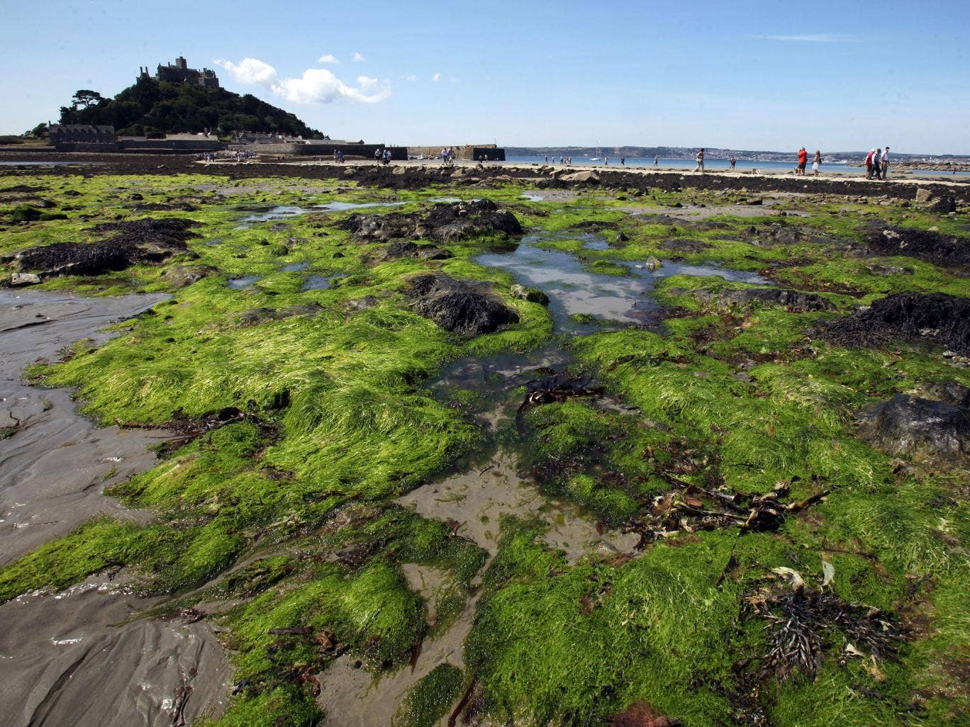 People walk across the causeway to St Michaels Mount at low tide on July 14, 2011 in Penzance, England