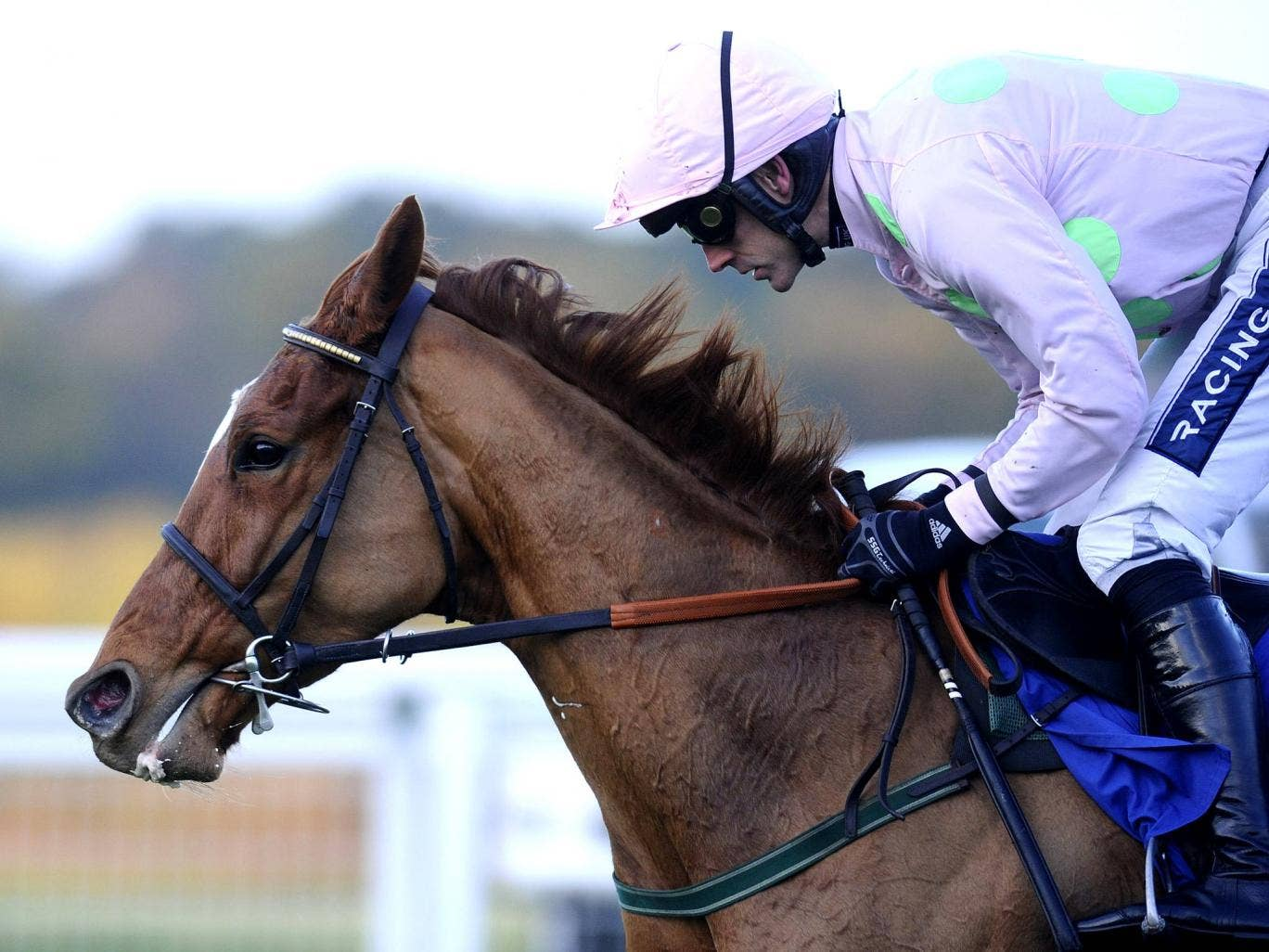 Ruby Walsh on Annie Power at Ascot last year