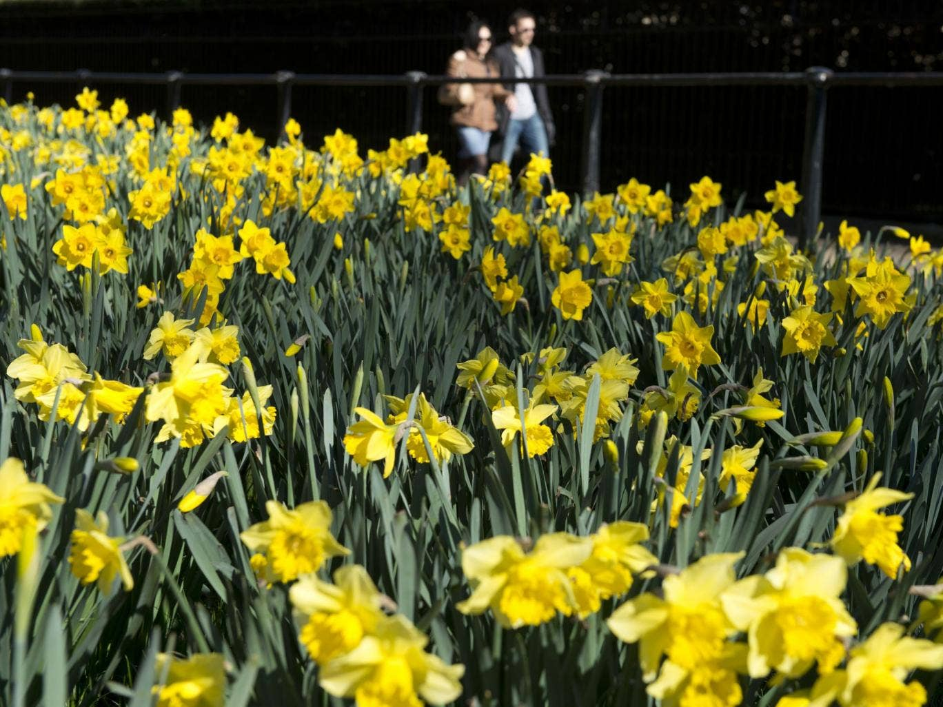 People enjoying the spring sunshine in central London, Sunday 16 March