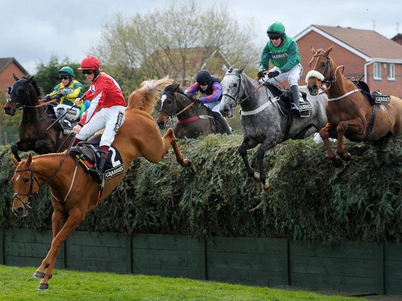 Double Ross leads over the National fences in the Topham Chase at Aintree yesterday from the grey winner Ma Filleule