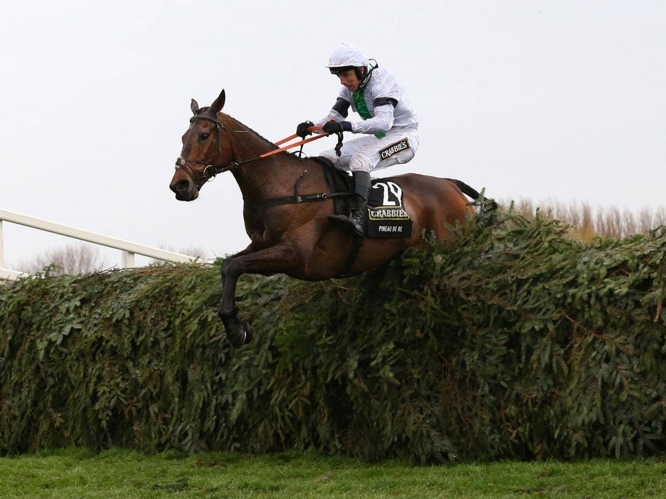 Pineau De Re wins the 2014 Grand National