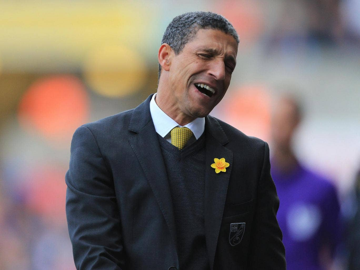Some Norwich City fans believe that the dismissal of Chris Hughton was a necessary act to give the club a chance of avoiding relegation