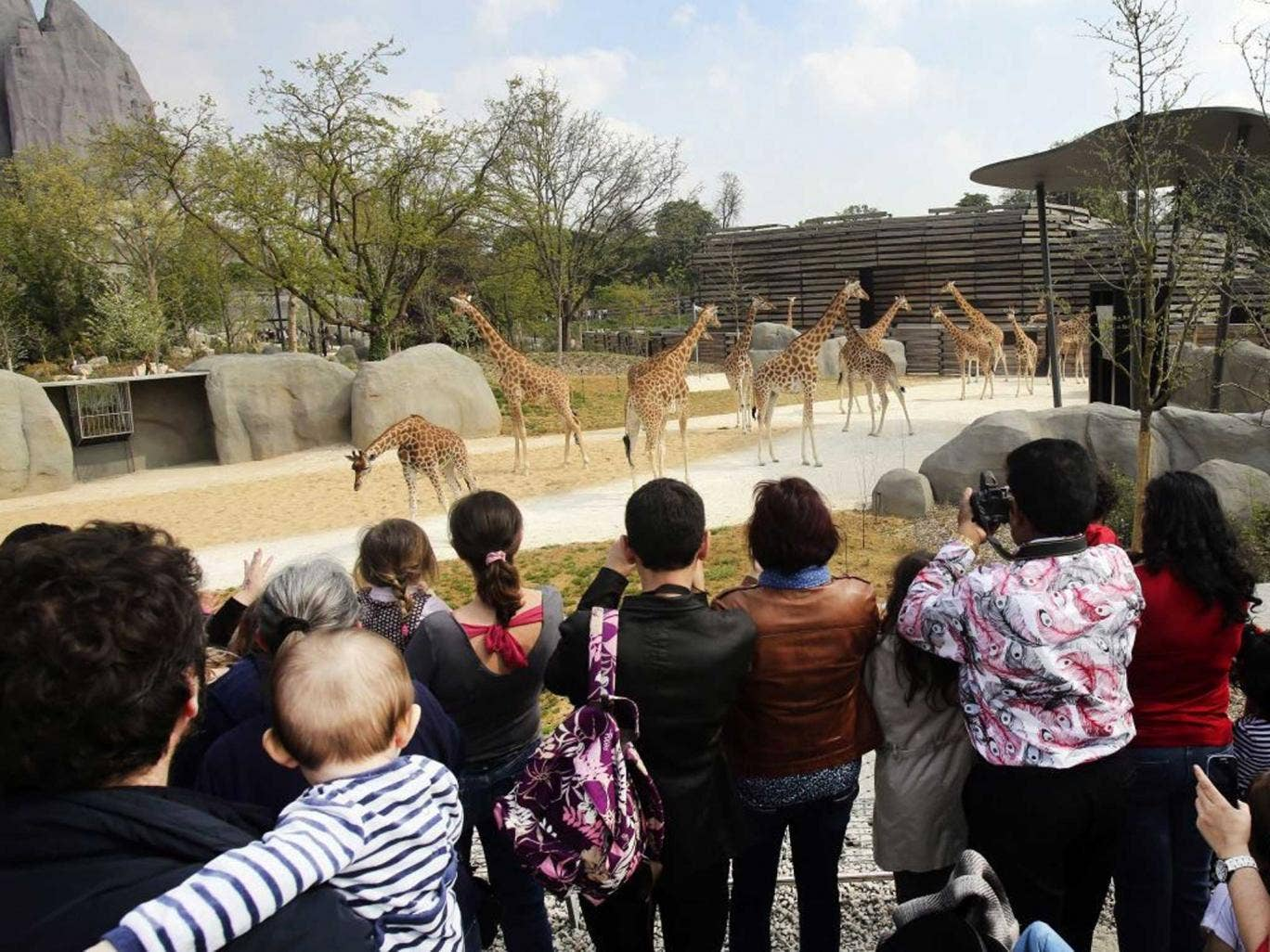 Groundbreaking design and new technology provide zoo animals with near-natural habitats