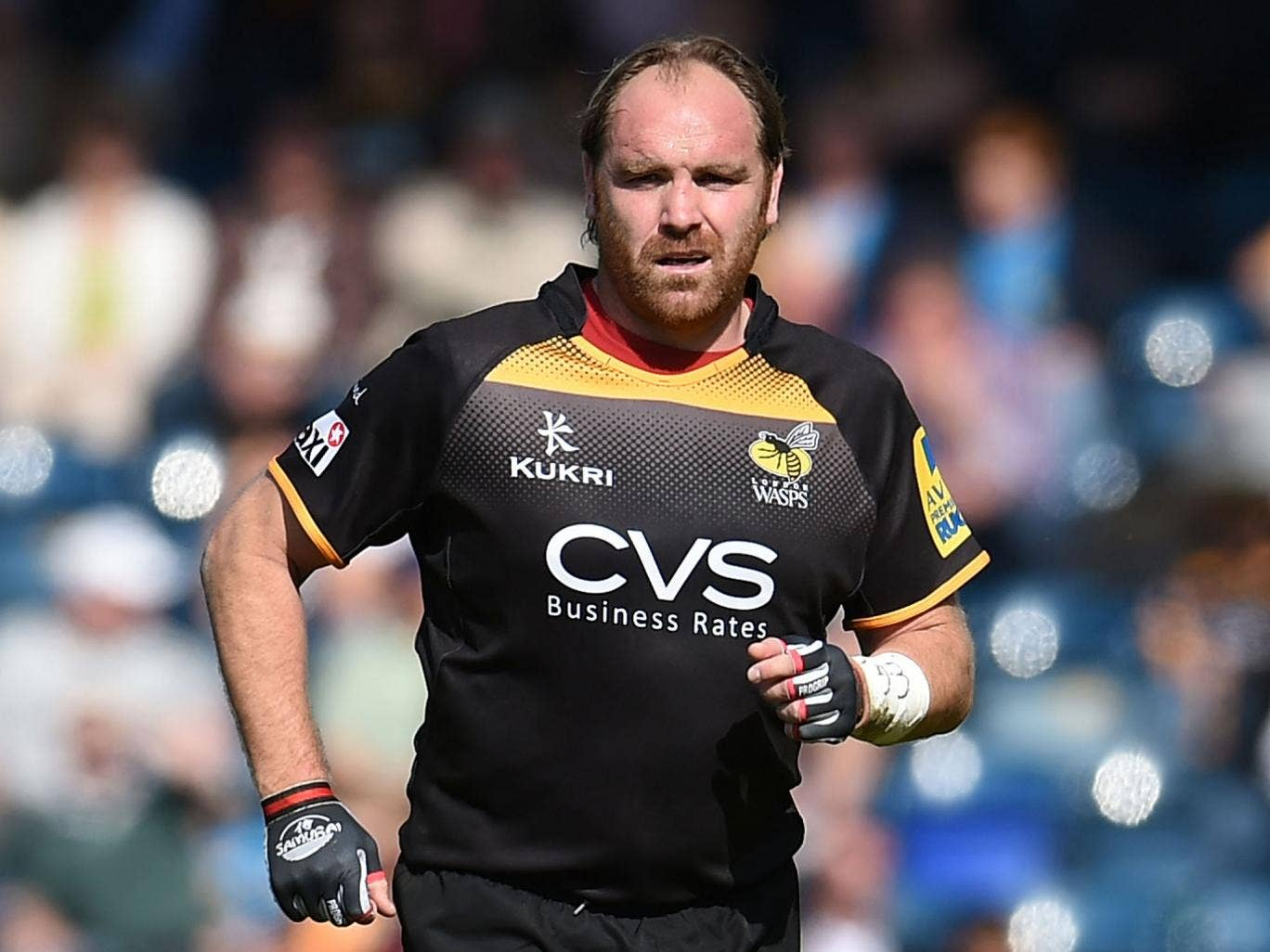 Andy Goode in action for Wasps against Newcastle on Saturday