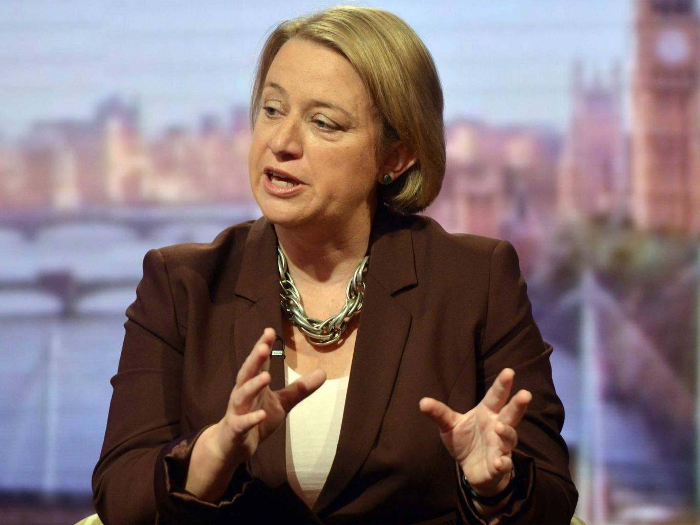 Natalie Bennett leader of the Green Party of England and Wales appears on the 'Andrew Marr Show' last month