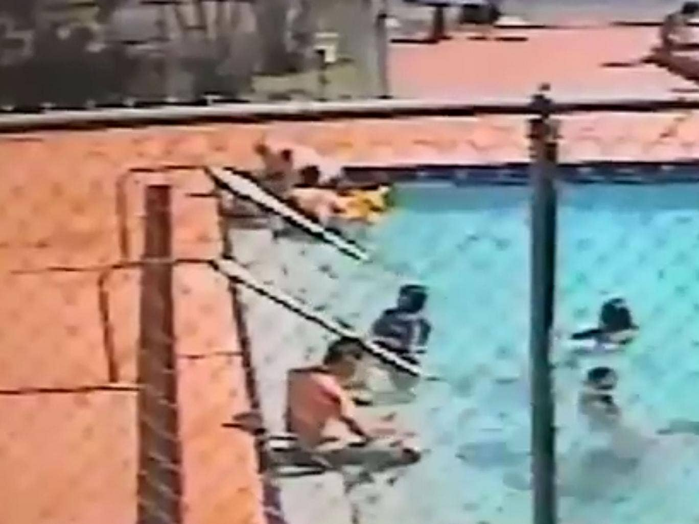 A number of people were swimming in the pool in Hialeah when the incident occurred