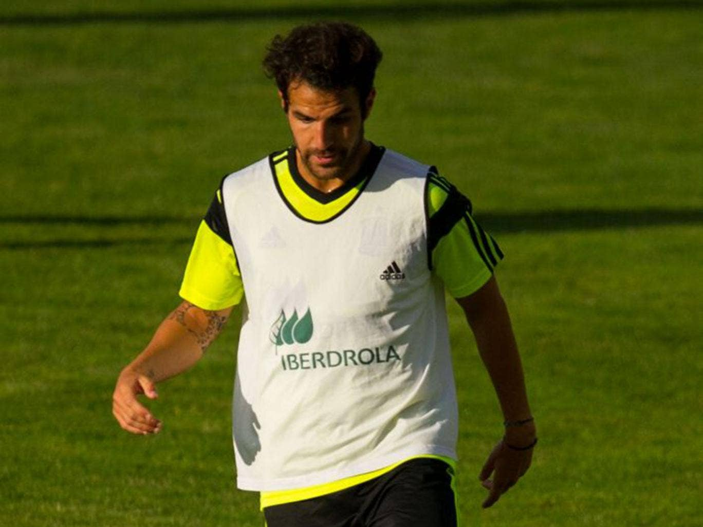Cesc Fabregas, preparing for the World Cup with Spain, is out of favour at Barça