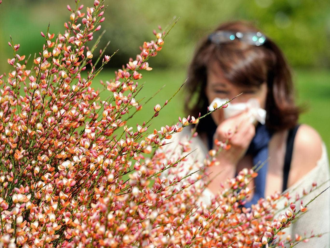 A woman blows her nose in Godewaersvelde, northern France on May 18, 2013, as the return of pleasant weather marks the arrival of allergenic pollen.