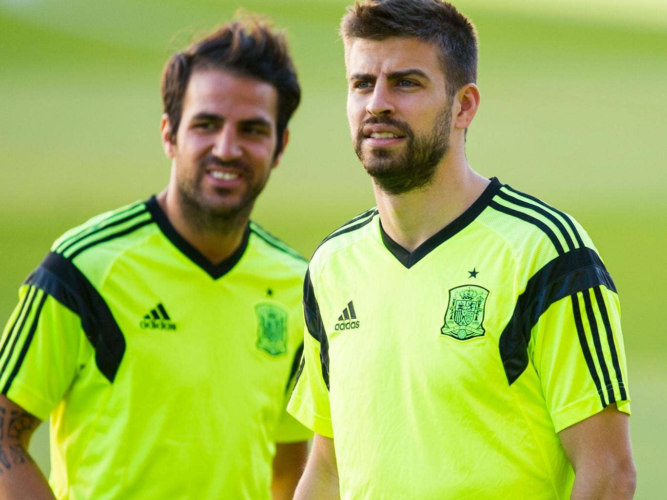 Cesc Fabregas (left) and Gerard Pique during training as Spain prepare for the World Cup