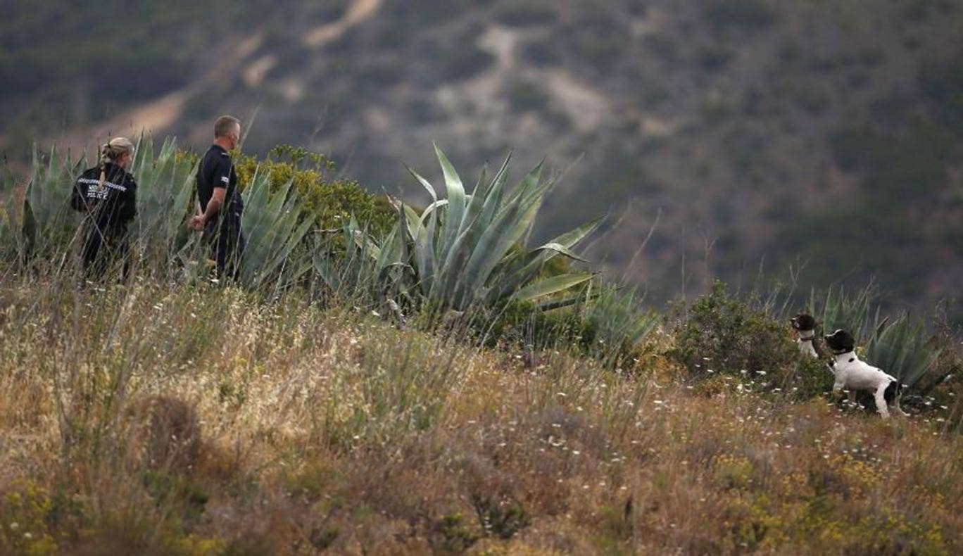 Scotland Yard detectives work with sniffer dogs on an area during the search for missing British girl Madeleine McCann in Praia da Luz, near Lagos, on 6 June, 2014