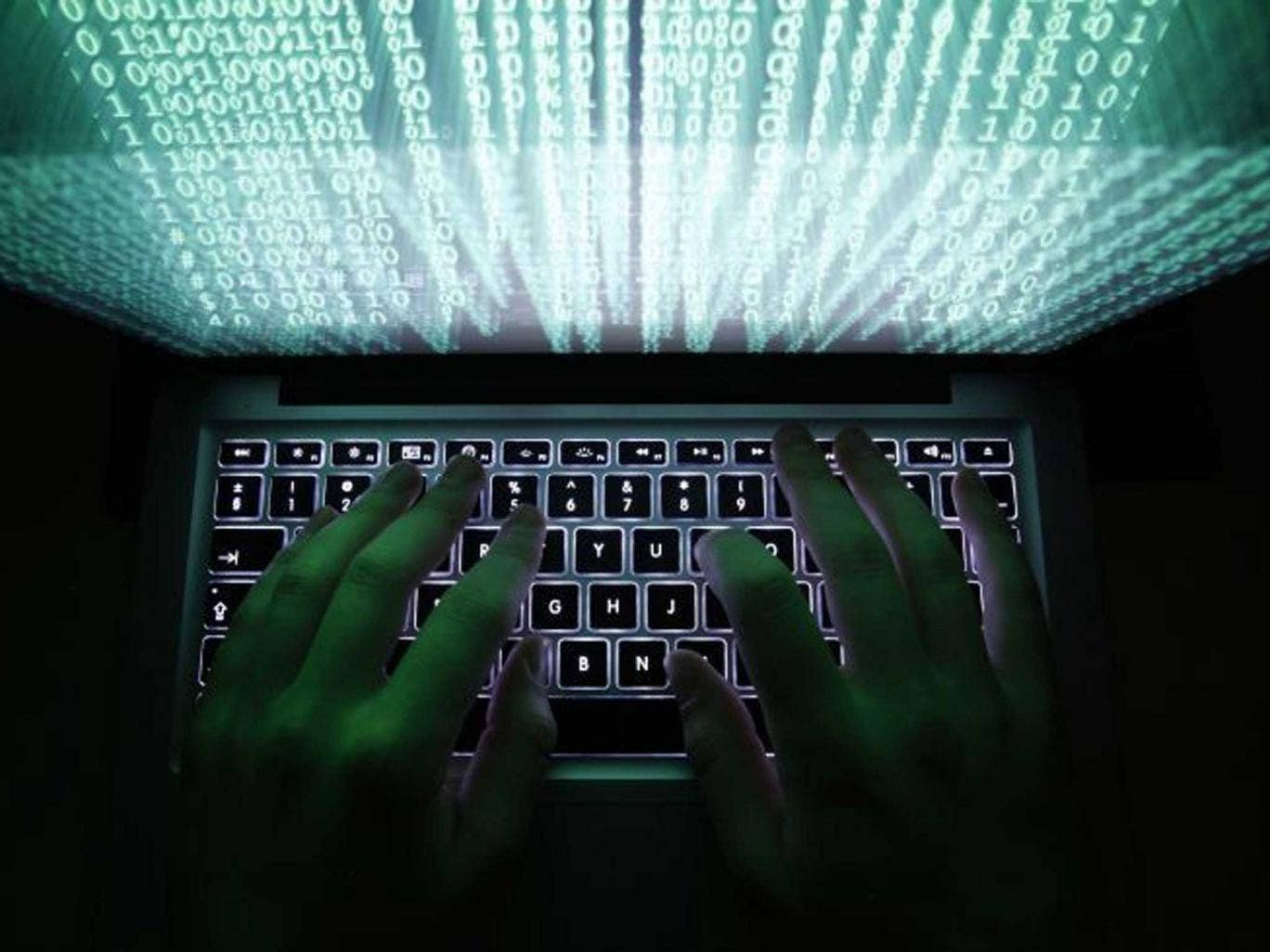 New laws: The Queen's Speech spoke of life terms for some cyber offences