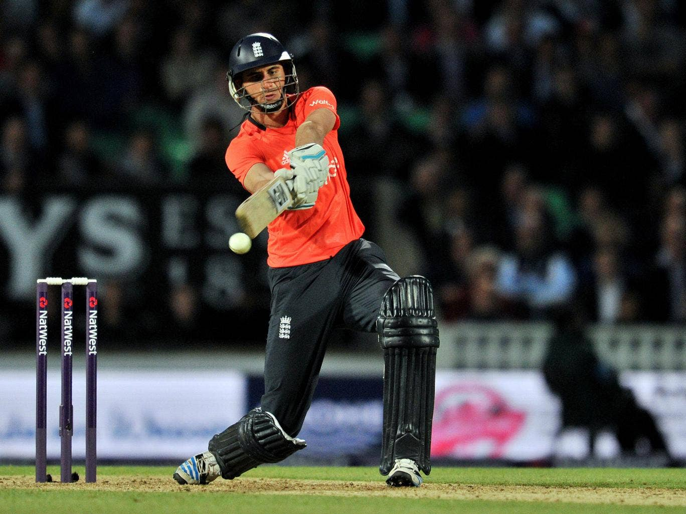 Alex Hales has agreed to join Hobart Hurricanes for the 2014-15 Big Bash League