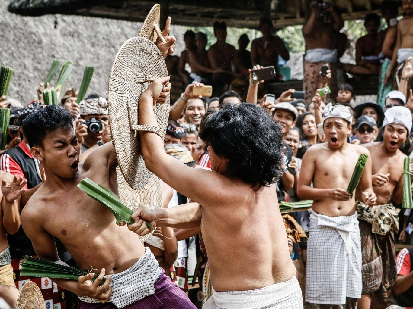 Two Tengananese men fight each other using thorny pandanus leaves in Tenganan Pagringsingan Village, Karangasem. One of the rituals during the ceremony is a Pandanus War or 'Mekare Kare', where two Tengananese men duel using thorny pandanus as their weapo