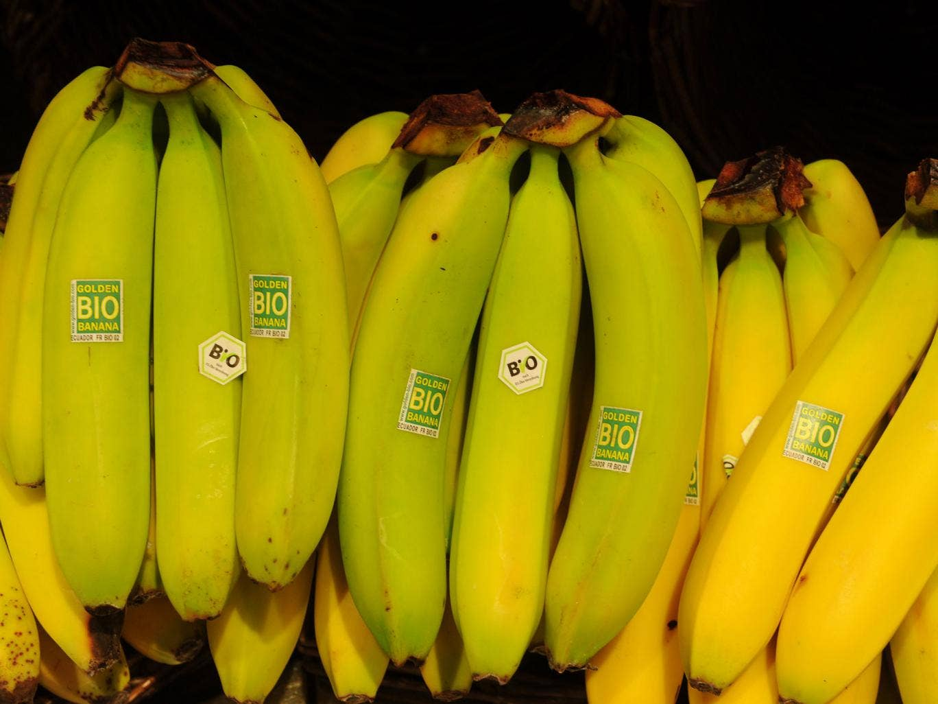 The specially bioengineered crop increases the level of beta-carotene in a particular type of cooking banana