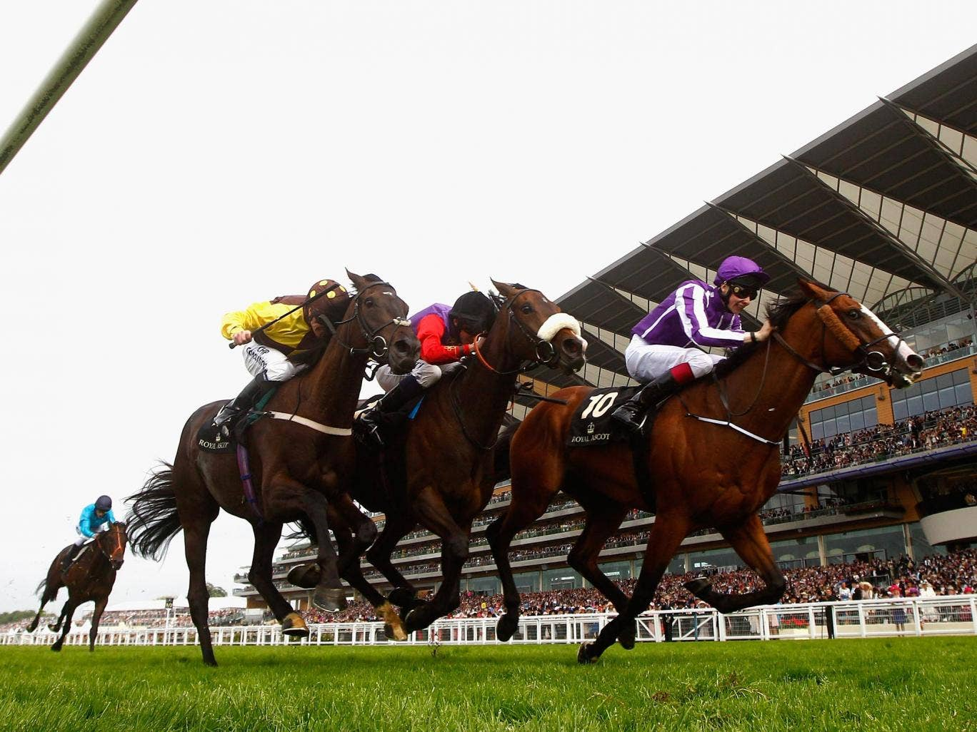 Leading Light (right) repels Estimate (centre) and Missunited in the Ascot Gold Cup