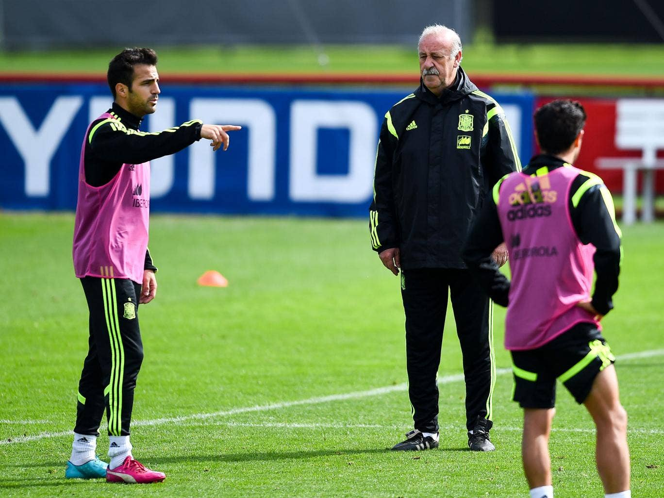Cesc Fabregas (left) and Vicente del Bosque speak during Spain's training before he removed his bib