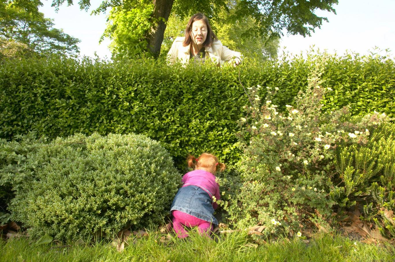 Toddlers will explore the undergrowth – so it might be best to dig up anything poisonous