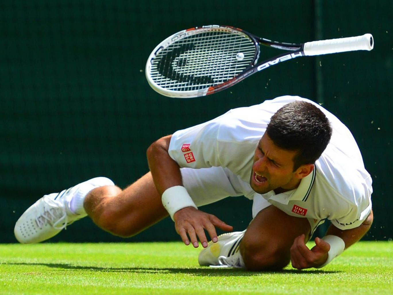 Novak Djokovic in pain after falling badly trying the sort of diving volley trademarked by his coach Boris Becker
