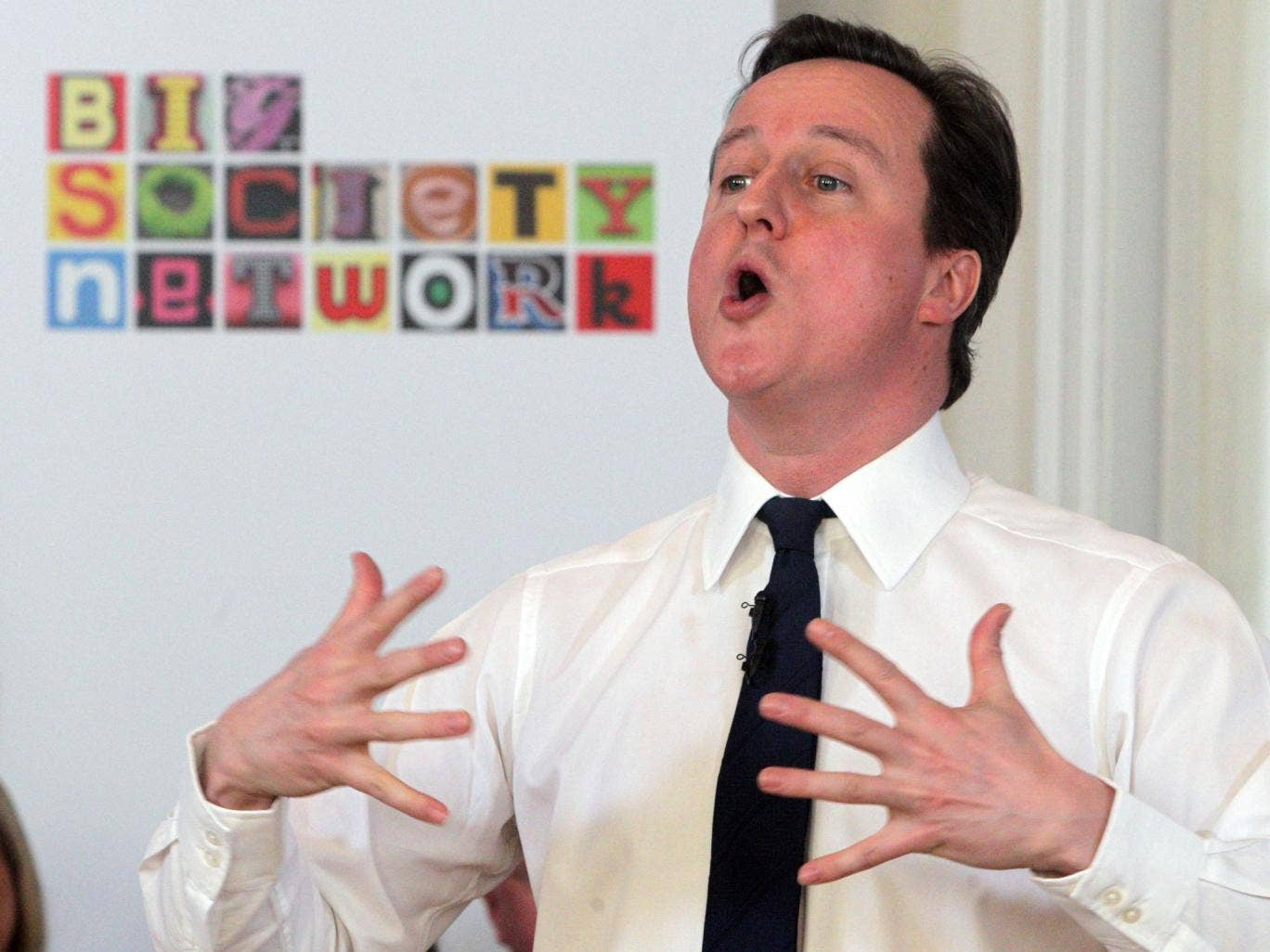 The Big Society that David Cameron once described as his 'passion' is a 'sham', which is hurting small charities increasingly having to work with powerful corporations in running services, campaigners have said