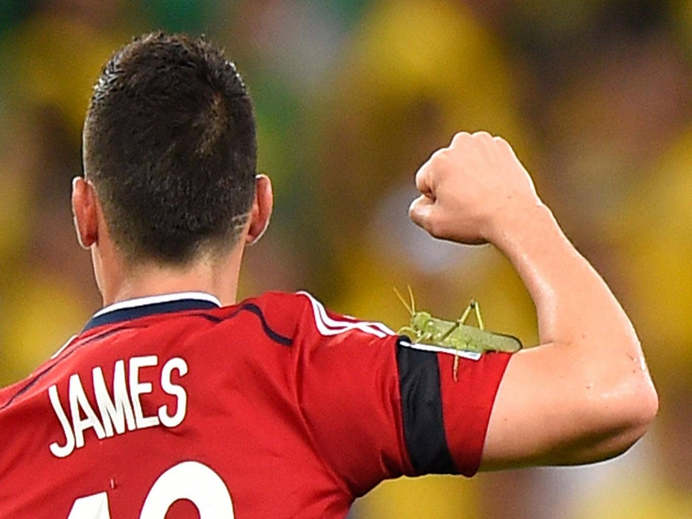 Colombia star James Rodriguez celebrates but is unaware that a grasshopper is on his arm