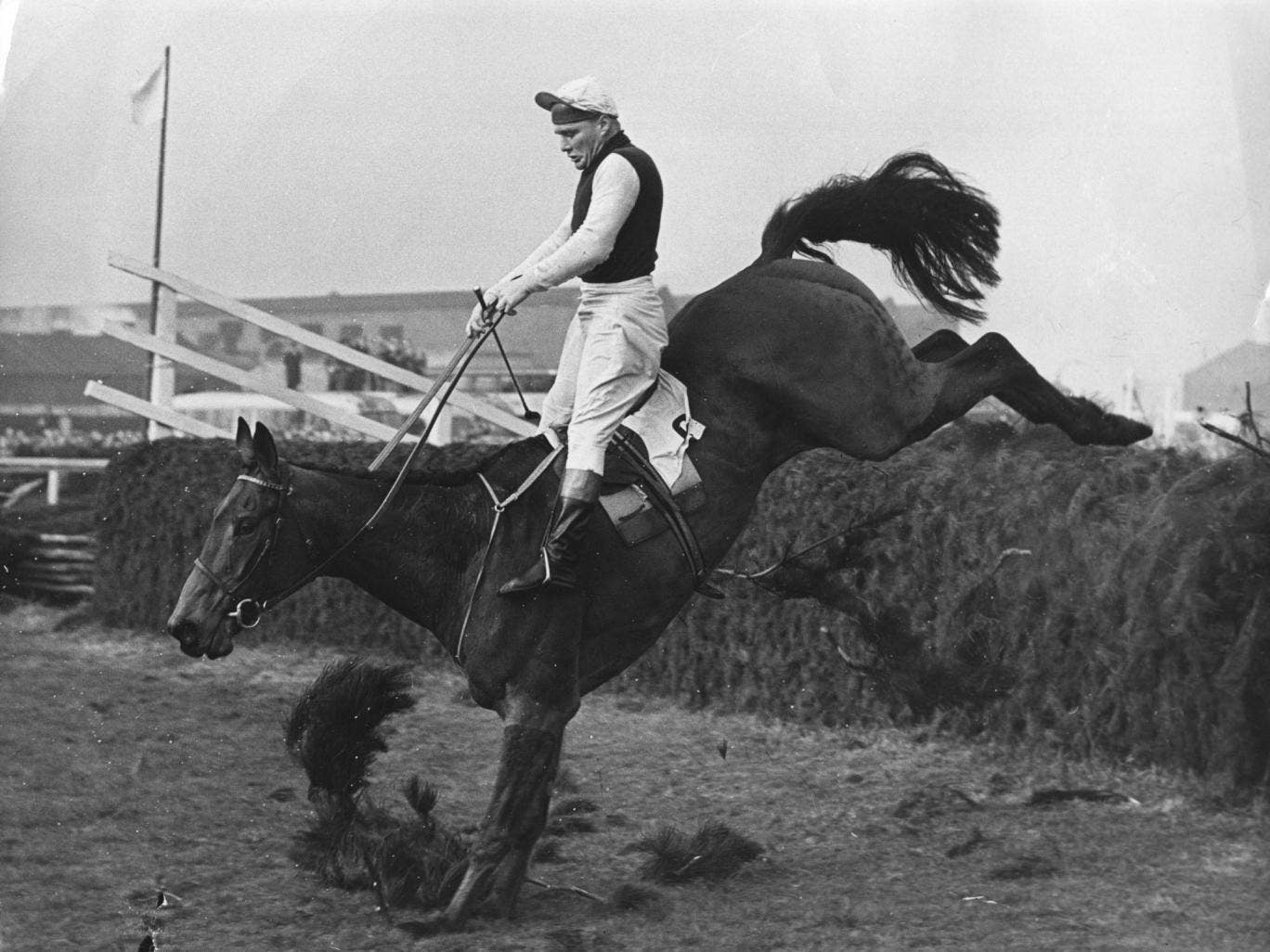 Despite stumbling at the second-last fence, Oxo, ridden by Michael Scudamore