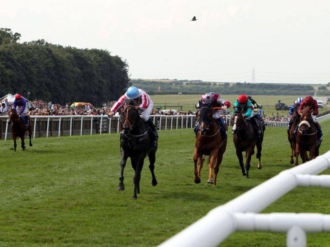 Feel the noise: Slade Power, ridden by Wayne Lordan, lands the July Cup